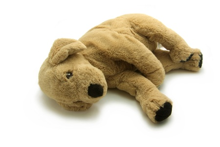 snugly: A Stuffed brown dog isolated on white background