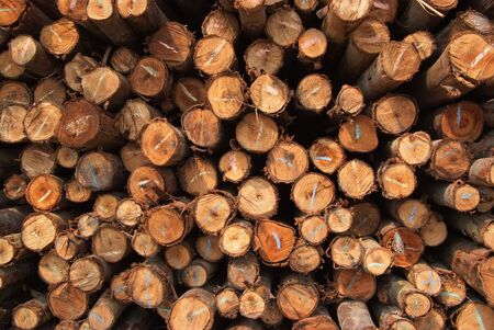 A pile of cut wood for construction   texture, background, pattren  photo