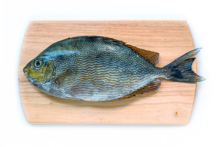 rabbitfish: Close up Java rabbitfish, Bluespotted spinefish or Streaked spinefoot fish on Wooden Chopping Block Board a wood background Stock Photo