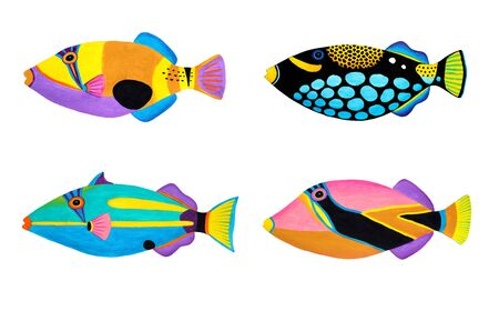 triggerfish: Collection of Triggerfish original acrylic Painting isolated on white background