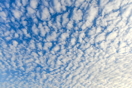 gloaming: The blue sky and white fluffy clouds