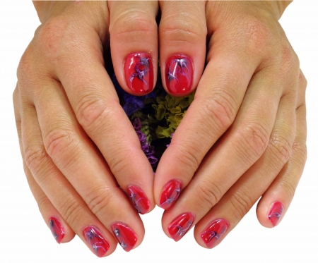 woman hands with red decorated nails on a white background  photo