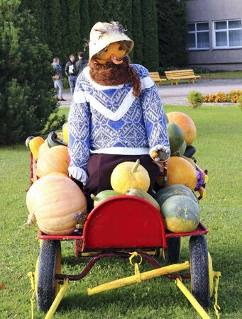 varying: Scarecrow pumpkin chariot loaded varying size pumpkin