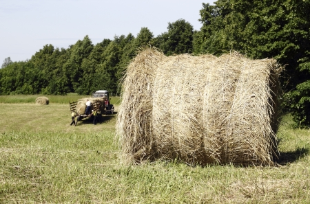 haymaking: Haymaking farmers It is the first important summer job  Stock Photo