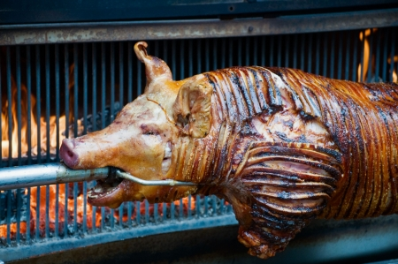 german food: Poor Sucking Pig grilled on Fire