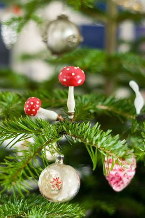 Toadstool on a Pine Branch Stock Photo - 6075701