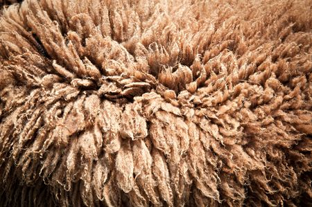 rug texture: Texture of a Brown Sheepskin Rug
