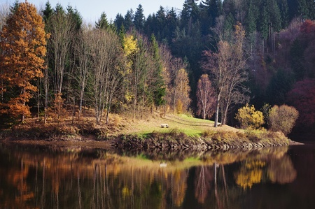 Autumn Forest with Lake Stock Photo - 8242130