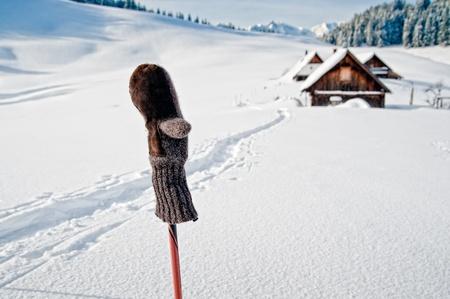 Ski pole in winter landscape Stock Photo - 12202439