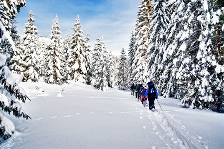 snowshoeing: Snowshoe hiking Stock Photo