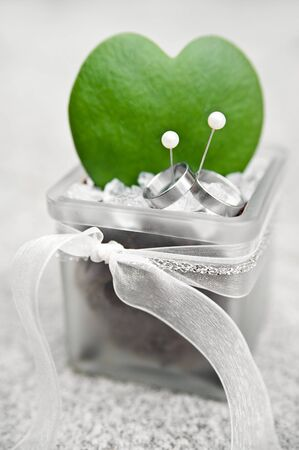 Wedding Rings with Cactus photo