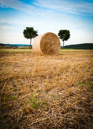 Hay Bale and Trees taken in upper austria photo