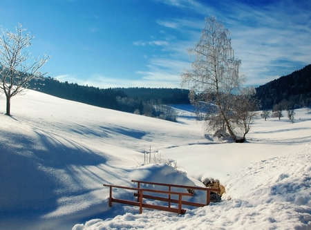 Winter Landscape in Austria with small Bridge photo