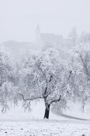 Winter Village on a misty Day Stock Photo - 17284718