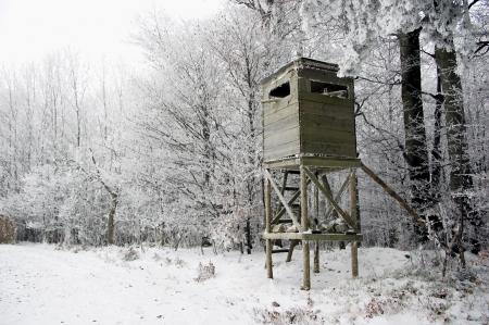wildschwein: Hunting Tower im Winter