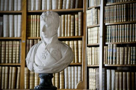Antique Bust in front of a Bookshelf Stock Photo - 17424169