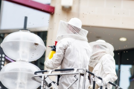 exterminator: Two exterminator spraying insecticide to control a bee population in the city Stock Photo