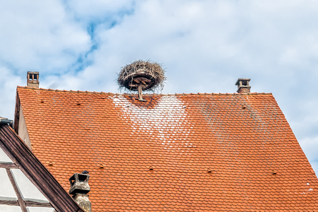 Roof with Storks Nest taken in Colmar, France photo