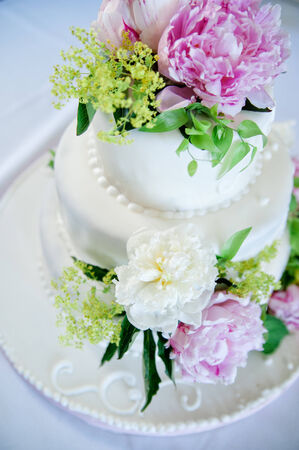 multi level white wedding cake with pink roses photo