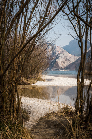 upper austria: View through young trees on a lake with mountain in the background. taken in salzkammergut, upper austria