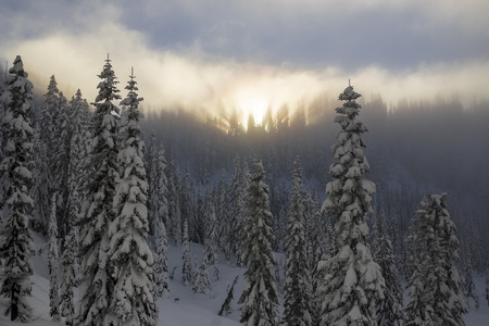 ridgeline: Snow Covered Mountain Forest Ridgeline with Hazy Sunset and Light Rays in Foggy Trees Stock Photo