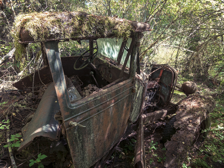 rust covered: Abandoned Truck in Forest Overran with Moss and Trees