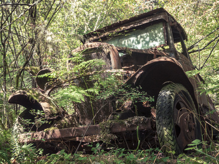 rust covered: Old Rusty Vintage Truck Abandoned in the Forest Stock Photo