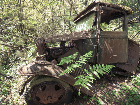 rust covered: Vintage 1930 Truck Abandoned in Forest