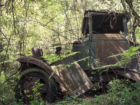 rust covered: Rusty 1930 Truck Falling Apart in Forest