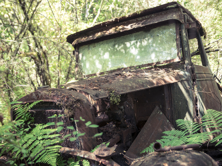 rust covered: Rusty Historic 1930 Truck Falling Apart in the Forest Stock Photo