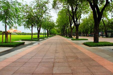 city park: street in park