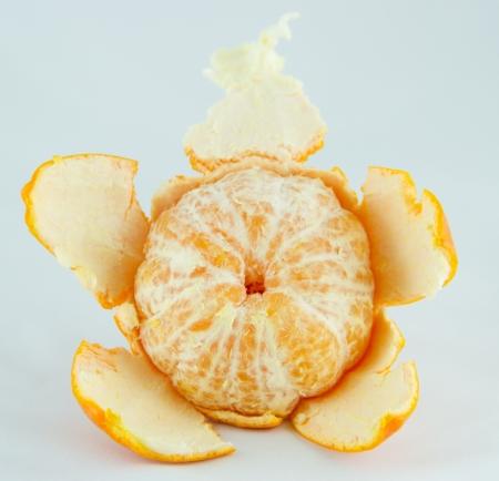 Orange casing on white background,Isolated photo