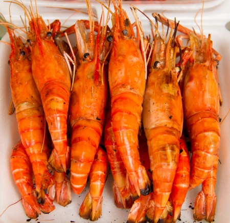 Grilled shrimps in a white box photo