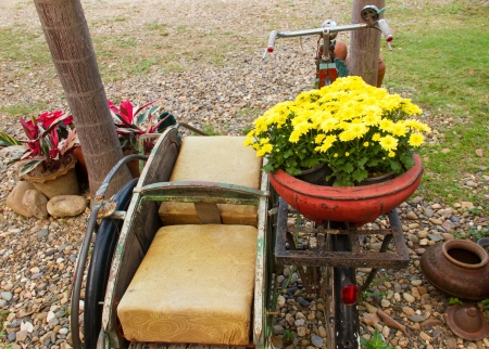 Old bicycle with flower pot photo
