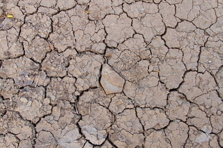 Stones in dry soil Crack soil on dry season, Global worming effect photo