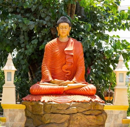 Buddha statue under the tree