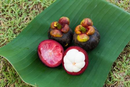Mangostan na liściach bananowca photo