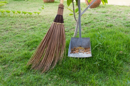 Broom and dustpan is in the garden photo