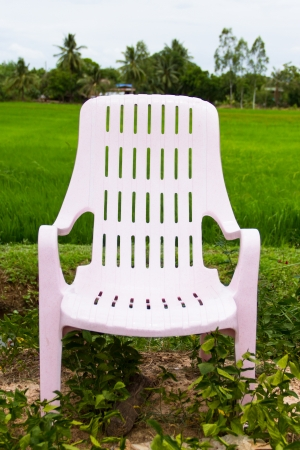Chair on Cornfield background photo