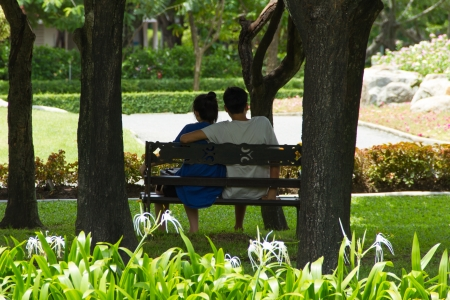 Two people sit on a bench under tree in the park photo