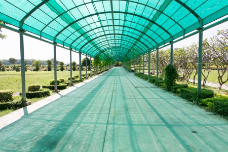 Walkway covered with shading net