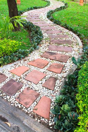 Walkway  in the green garden photo