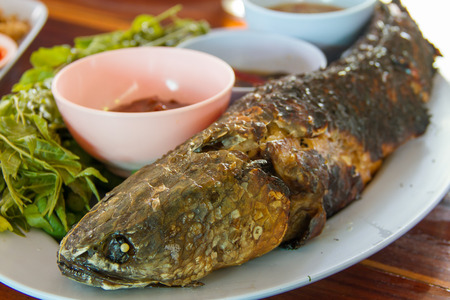 common snakehead: striped snakehead fish Grill salt