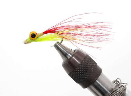Freshwater fly Banco de Imagens
