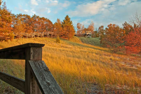 Great Lakes dune area in fall