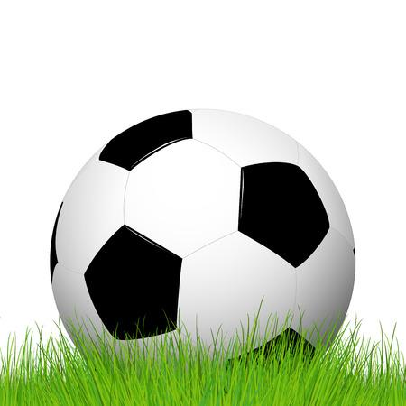 soccer ball lying in grass Vector