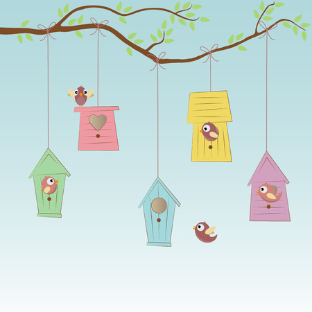 birds eye view: colored birds houses hanging on to some tree with birds