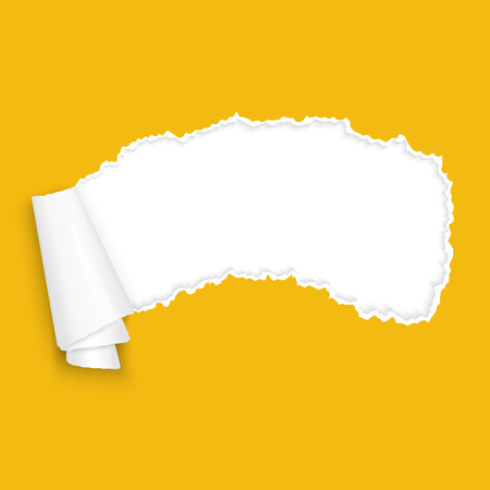 ripped paper: vector of ripped open paper colored orange Illustration