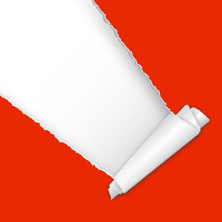 rosso carta strappata aperto con l'arricciatura e lo spazio per il testo