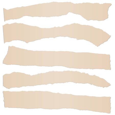 collection of five brown colored scraps of papers  イラスト・ベクター素材